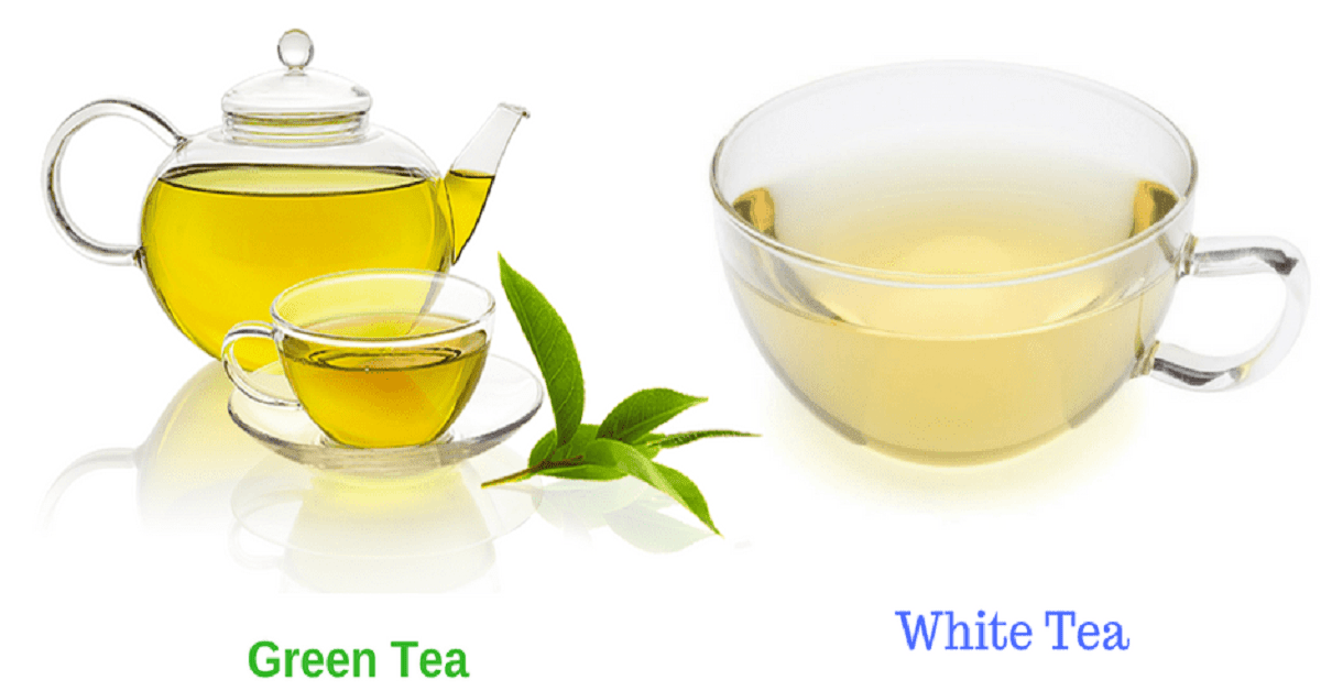 What is the Difference between White Tea and Green Tea?