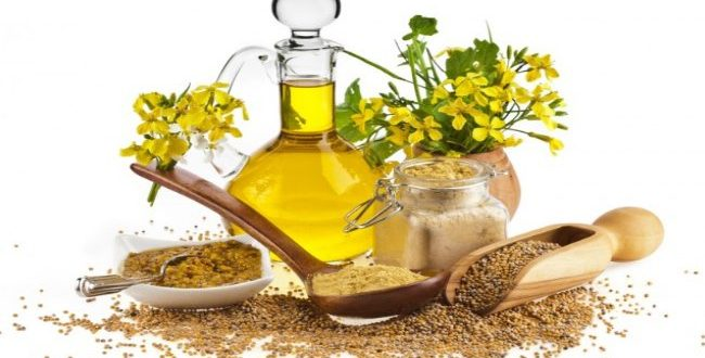 How effective is Mustard Oil as Moisturizer?