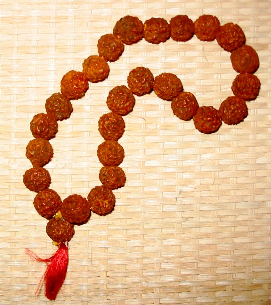 Health Benefits of Rudraksha - Holy Rudraksha Not Only Used For Worship of God,It Can Cure Many Illnesses
