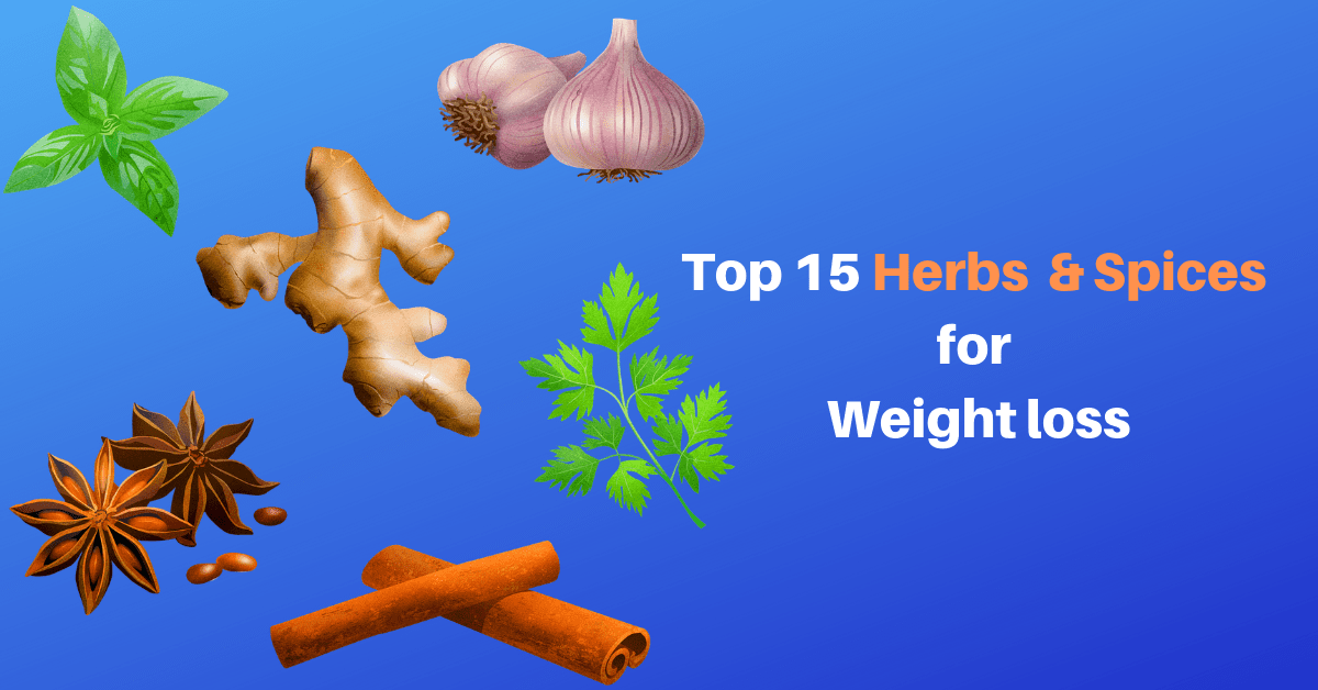 Top 15 Herbs and Spices for Weight Loss