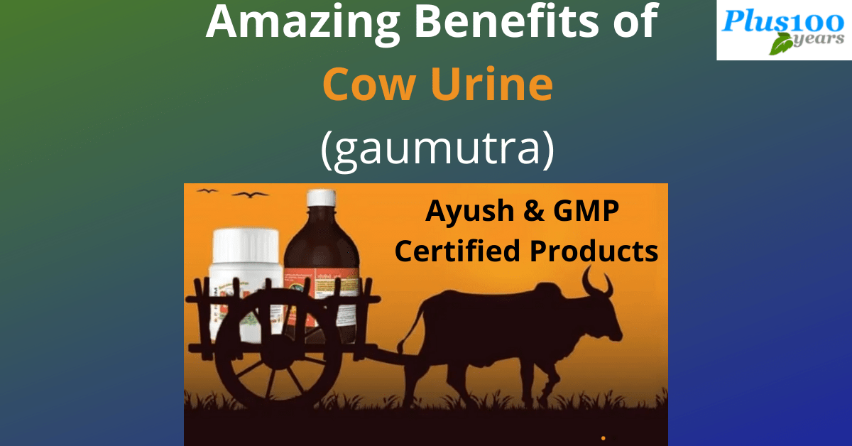 Benefits of Gaumutra for Health Problems