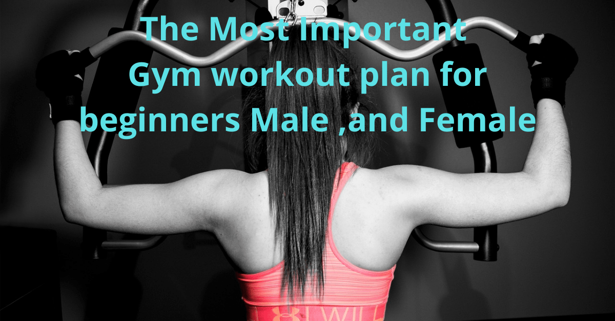 5 Gym and Workout Tips for all Beginners should know