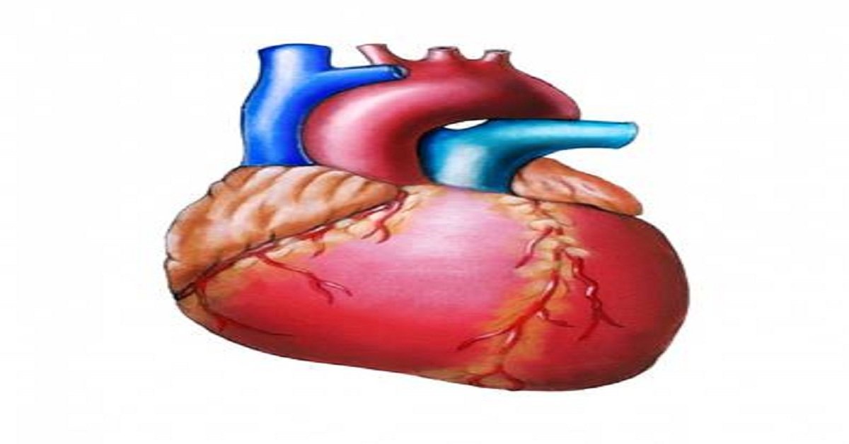 What are Heart related Problems?