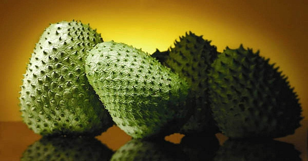 Is this Fruit 1000 Times Stronger Than Chemo?Know More About Laxman Phal