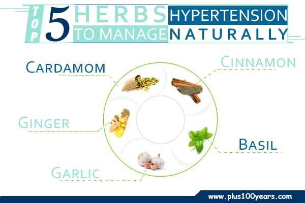 Herbs to manage hypertension naturally