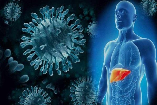 Hepatitis    Hepatitis C