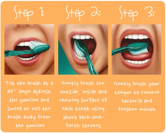 Steps to brush your teeth properly
