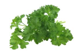 Parsley is the most effective home remedies to avoid pregnancy || Parsley is the most effective home remedies to avoid pregnancy