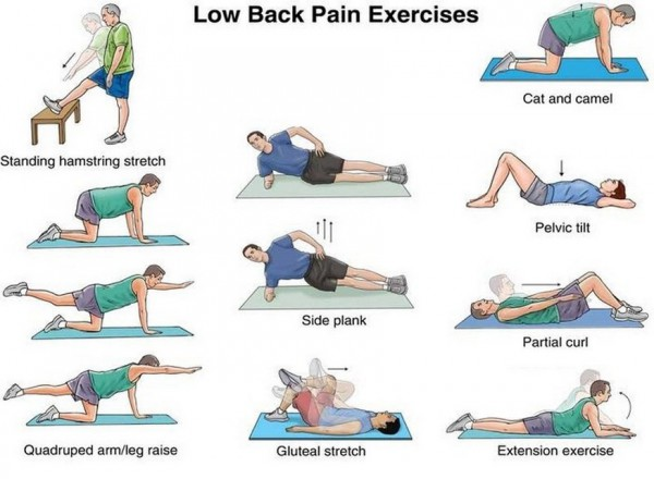 top 10 exercises to reduce back pain