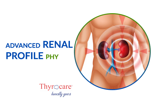 ADVANCED RENAL PROFILE PHY