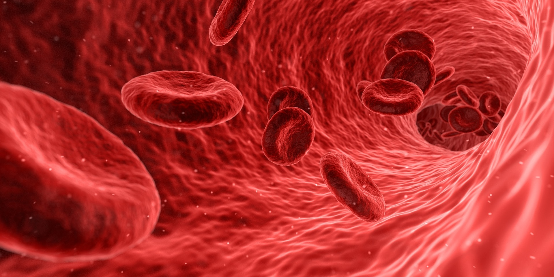 Top 15 Best Blood Cleansing Foods - How to Purify Blood with Natural Organic Foods
