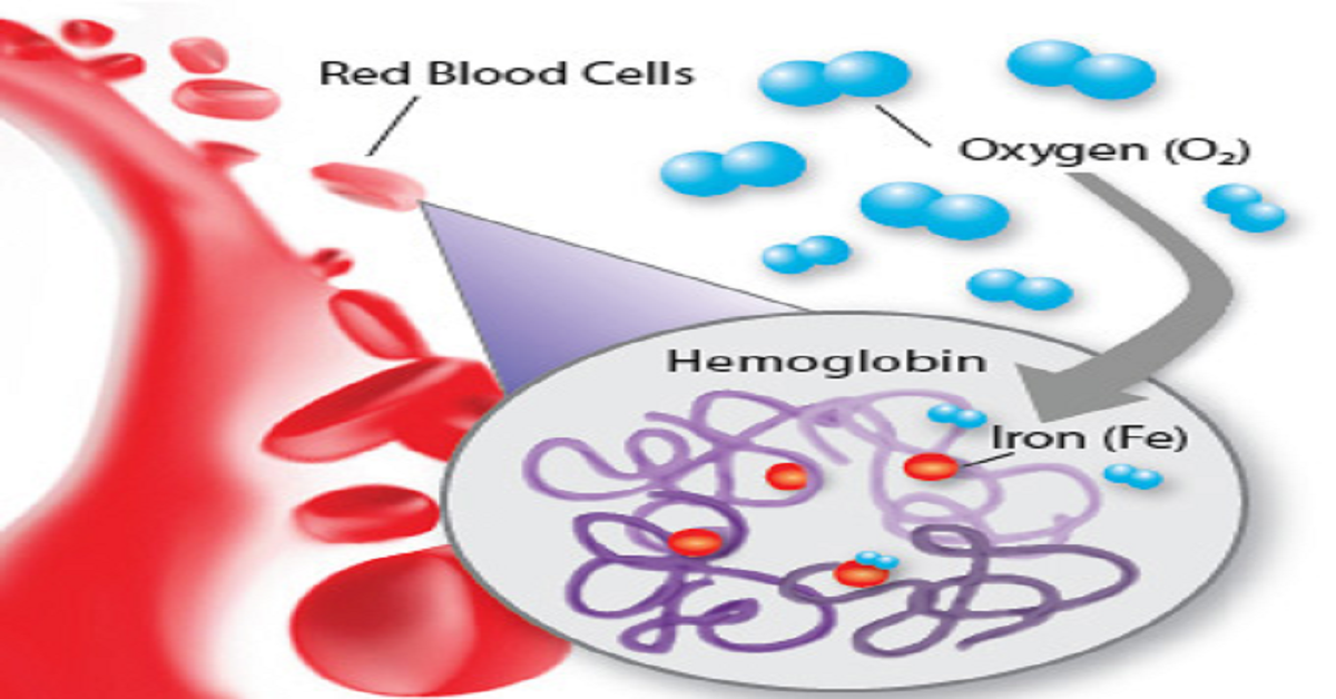 What Should be the Ideal Hemoglobin levels in Teenagers?