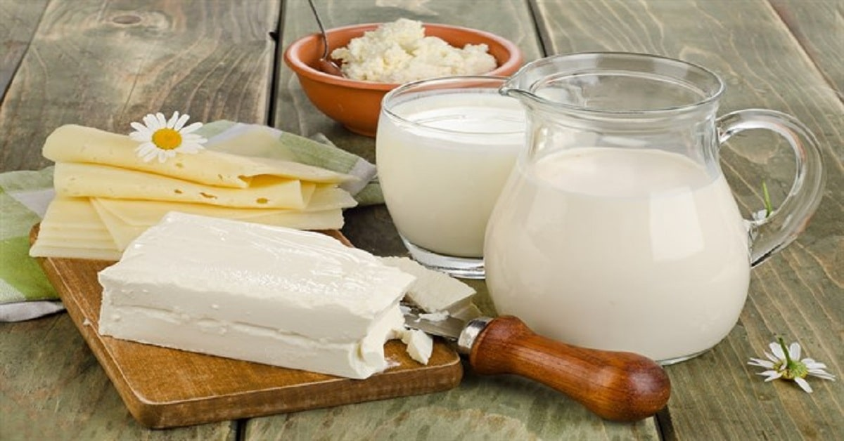 Why Probiotics Are Important? Know Top 5 Probiotics Foods to Strengthen Your Immune System